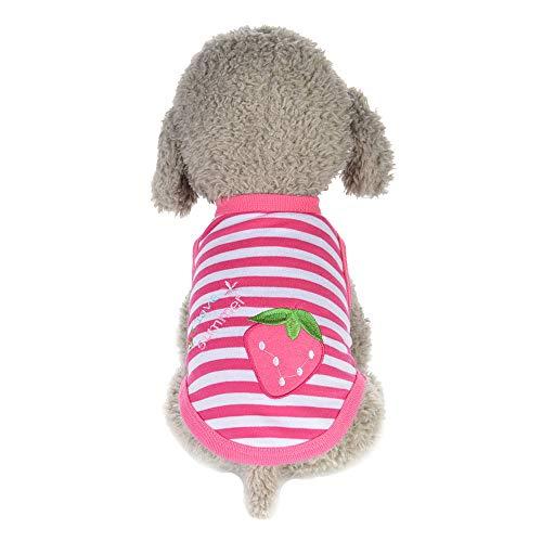 Kostüm Muster Erdbeere - Hawkimin Kleidung Hund Haustier-Kleidung Welpe Rundhals-Shirt Zwei-Bein-Kleidung Erdbeer Muster Weste