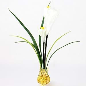 Fleur de crocus artificiel avec un bulbe, 2 fleurs blanches, 25 cm - Fleur artificielle / Crocus blanc - artplants