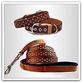 Lushpetz Designer-Hundehalsband und passende Leine in Schwarz, Braun oder Weiß, Größe: XS bis M, auch für Welpen geeignet