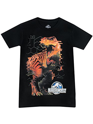 Jurassic World - Camiseta para niño - Jurassic World - 12 - 13 Años