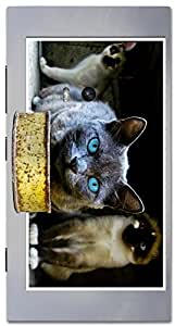Timpax protective Armor Hard Bumper Back Case Cover. Multicolor printed on 3 Dimensional case with latest & finest graphic design art. Compatible with Nokia Lumia 920 Design No : TDZ-25680