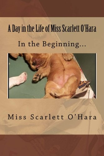 A Day in the Life of Miss Scarlett O'Hara: In the Beginning