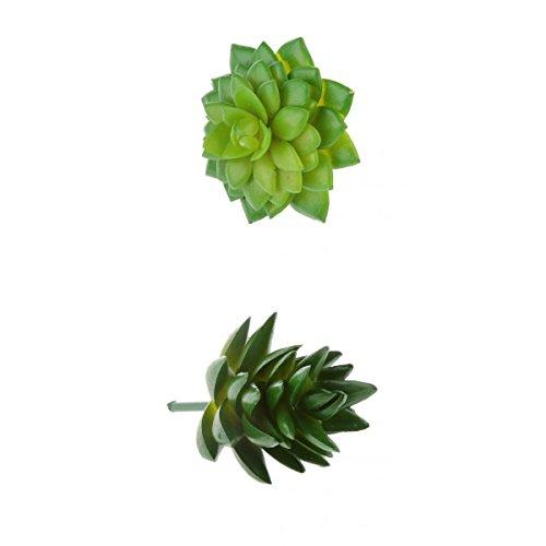 Homyl Künstliche Sukkulenten Kunstpflanzen Pflanz Blume Saftiges Alocasia + Haworthia Tortuosa