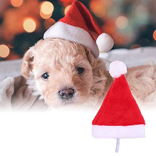 Santa Plüsch Kostüm - XdiseD9Xsmao Weihnachtsfeiertags-Kostüm-weiches Dauerhaftes Plüsch-Haustier-Hundeweihnachtsmannmütze-Partei-Versorgungsmaterial-Dekor-Weihnachtshalloween-Geschenk Beleuchten Dieses Weihnachten