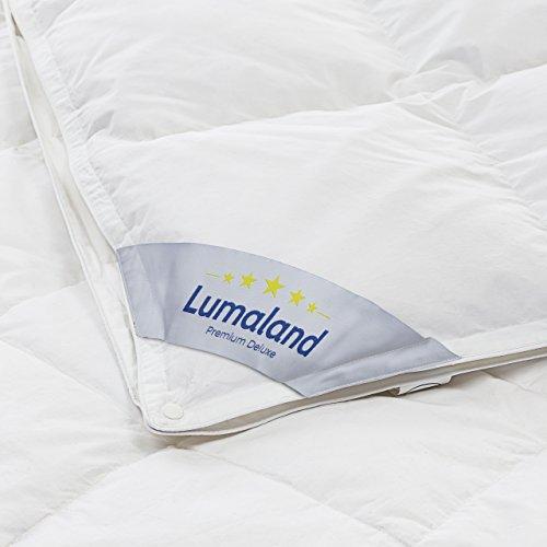 Lumaland Luxury Daunendecke 4 Jahreszeiten 90% Entendaunen 10% Entenfedern Klasse 1 Füllung 220+720g 135x200 cm