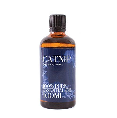 Mystic Moments | Katzenminze Öl-100ml-100% Pure