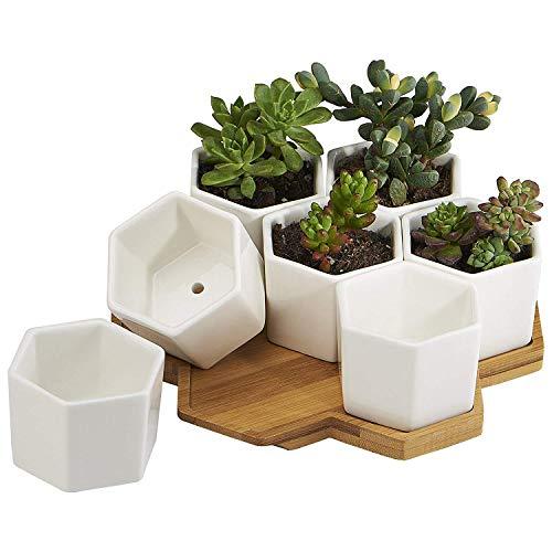 SODIAL 7 Pack 2,75 Pouces Blanc Moderne en Ceramique Petit Hexagone Succulent Cactus Fleur en Pot pour Interieur en Plein Air Bureau Maison Jardin Cuisine Decoration Bambou Plateau