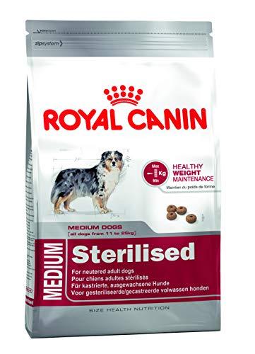ROYAL CANIN Medium Sterilised - 10 - Royal Canin Medium Sterilised