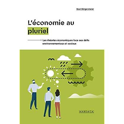 L'économie au pluriel: Les théories économiques face aux défis environnementaux et sociaux (GESTION, ENTREP)