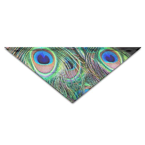 deyhfef Colorful Peacock Feathers Pet Dog Cat Puppy Bandana Triangle Head Scarfs Accessories