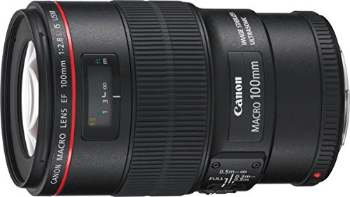 Canon 100 / 2,8L Macro IS USM – Objetivo para Canon (distancia focal fija 100mm, estabilizador) color negro