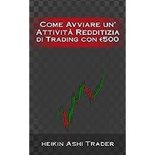 Come Avviare un'Attività Redditizia di Trading con €500 (Italian Edition)