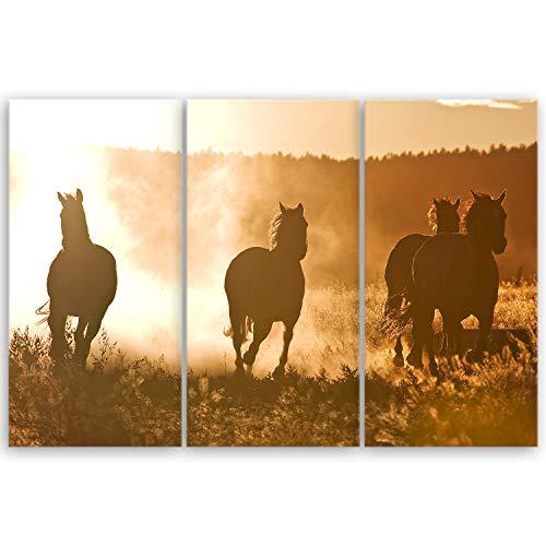 hochwertiges Leinwandbild Naturbilder Landschaftsbilder - Horses at Dawn - Natur Tierbilder auf leinwand - 90 x 60 cm mehrteilig (3 teilig) 2212 M