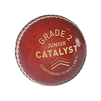 GM Kids Catalyst Pelota de...