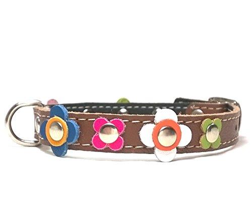 Leder Hunde-halsband Design Kleine Hunde und Chihuahuas - Halsband Braun Lederhalsband - Fröhliche Farbige Blumen