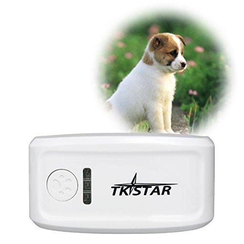 collare-localizzatore-portatile-gps-tracker-animali-domestici-cane-gatto-ps013