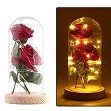Konesky 2ST künstliche verzauberte Rose mit 20 LED-Licht in einem Glaskuppelglocke Glas Seide rote Rose Blume warmes Weiß mit Holzbasis DIY für Wohnkultur Urlaub Projekt Party Hochzeitsgeschenk