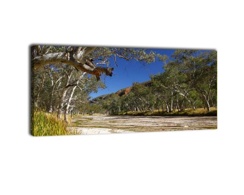 Leinwandbild Panorama Nr. 147 Alice Springs 2 100x40cm, Keilrahmenbild, Bild auf Leinwand, Australien Outback