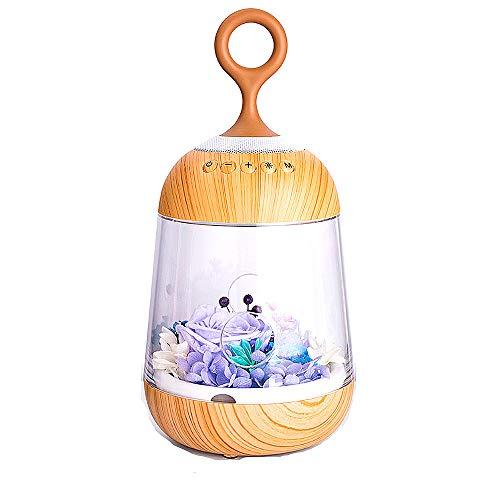 Tragbare Bluetooth-Lautsprecher Nachtlicht ewige Blume wiederaufladbare LED Mädchen Schlafzimmer Nacht Bunte Atmosphäre mit Schlaf Licht Geschenk tragbare Bluetooth-Lautsprecher Lampe