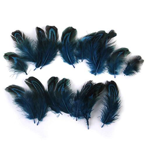 Fliyeong Feder Natürliche Dekoration Wilder Vogel Kupfer Huhn Grüne Stück Feder Für Kostüme Hüte Wohnkultur 50 - Gruppe Von Acht Kostüm