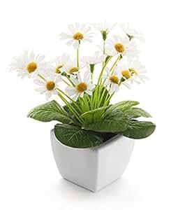 Closer To Nature FT034WD - Plante de Marguerite de Paris artificielle blanche de 19 cm
