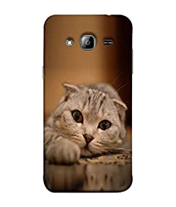 PrintVisa Designer Back Case Cover for Samsung Galaxy On7 G600Fy :: Samsung Galaxy Wide G600S :: Samsung Galaxy On 7 (2015) (Cat Baby Playing Animal Kitty Downlying Beautiful Hunting)