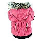 Animaux Chien Vestes Zipper Fold Hoodies Gardez Au Chaud Confortable Coupe-Vent d'hiver Chat Chien Costume Manteau
