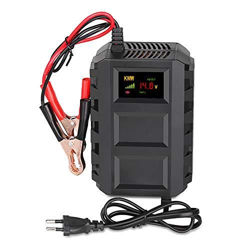 Enjoygoeu Carica Batteria Mantenitore, 12V 20A Multi Proictezioni Caricatore Intelligente Automato Caricabatterie Manutentore per Auto, Moto, ATV, Barca,Camper, Powers Ports
