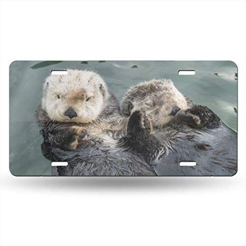 Hände Plaque (Ganheuze Cuteness Overload Sea Otters Hold Hands 612inchs Feel Metal Tin Sign Plaque for Home,Bathroom and Bar Wall Decor Car Vehicle License Plate Souvenir Car Decoration)