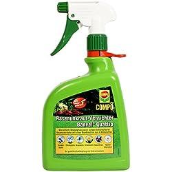 COMPO Rasenunkraut-Vernichter Banvel Quattro AF (Nachfolger Banvel M), Bekämpfung von schwerbekämpfbaren Unkräutern im Rasen, Anwendungsfertig, 1 Liter