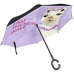 LA NUEVA OLA. Paraguas invertido.