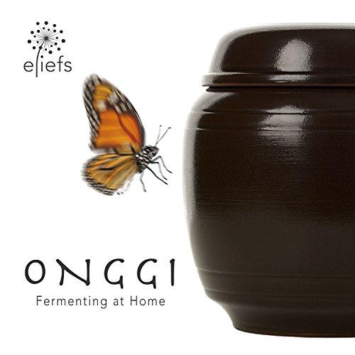 eliefs Onggi | Atmende Keramik, 100% natürliche Glasur | Premium Gärtopf (2 Liter)