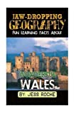 [(Jaw-Dropping Geography : Fun Learning Facts about Wonderful Wales: Illustrated Fun Learning for Kids)] [By (author) Jess Roche] published on (February, 2015)