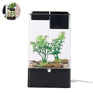Aolvo Aquaponic Betta Fish Tank, Mini Water Garden Fish Tank with LED Colorful Lights, Cube Aquarium Starter Kit, Aquarium Tank Kit for Home Decor, Desk, Bar Top, Window Sill Water Garden