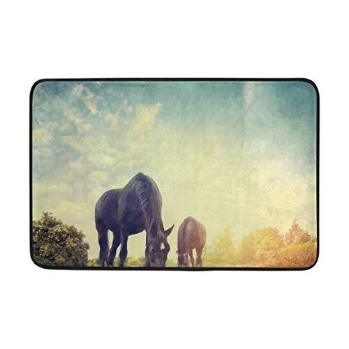DEZIRO Pferde-Fußmatte Eden Tür-Schuhabstreifer Bereich Teppich Fußmatte Fußmatten Home Dec rutschfest waschbar -