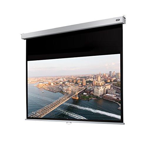 celexon Rollo-Leinwand Professional Plus | Format 16:10 | Nutzfläche 280 x 175 cm | Beamer-Leinwand geeignet für all Projektortypen | Full-HD und 3D-Leinwand | Einfache Installation & gute Planlage