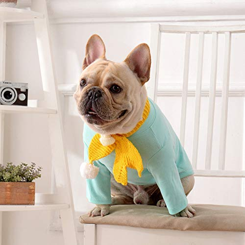 2 Kostüm Bein Hunde - JFFFFWI Haustier Kleidung Hund Kleidung Street Fashion Herbst und Winter Zwei Beinen Pullover Hund Kostüm lässig einfarbig Hund Pullover (Farbe: Himmelblau, Größe: S)