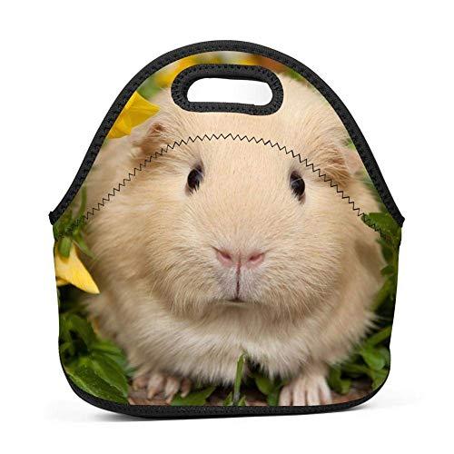 Dozili Lunchtasche für Meerschweinchen, groß, dick, Neopren, isoliert, warm, mit Schulterriemen für Damen, Teenager, Mädchen, Kinder und Erwachsene