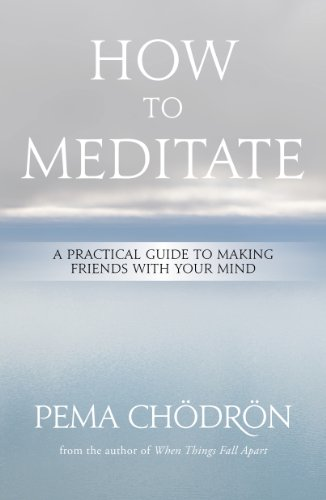 Meditation: How to Meditate: A Practical Guide to Making Friends with Your Mind (English Edition)
