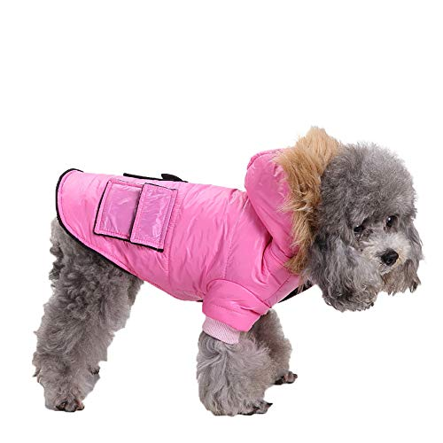 (Amphia - Haustier Hund Tasche Jacke Mantel Kleidung,Haustier Hund Katze Welpen Winter warme Kleidung Kostüm Jacke Mantel Kleid(Rosa,S))