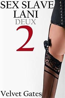Sex Slave Lani 2 (Sado-Masochistic Shock Therapy Session) (English Edition) di [Gates, Velvet]