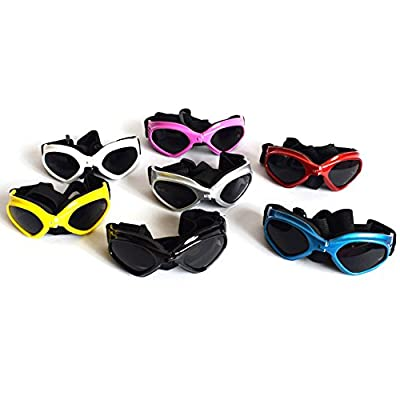 Dog sunglasses from Pet Leso