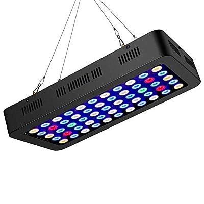 ZTJ-Lighting Lumière d'aquarium de 165W LED (lumière de Corail de Spectre Complet de Dimmable LED avec la chaîne de Marguerite), pour l'éclairage d'aquarium Bleu Blanc de récif d'eau salée