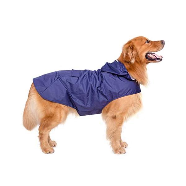 JOYKK Impermeable para Perros con Capucha Poncho Impermeable para Lluvia Impermeable Ropa de Lluvia Ropa Reflectante… 3