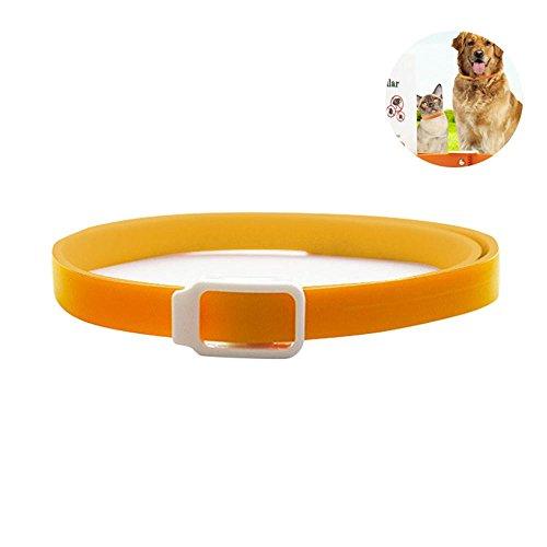 Aolvo antipulci collare per cani/gatti, erbe repellente naturale collar–3mesi di protezione, tutte le taglie, silicone regolabile tick/zanzare prevenzione efficacemente pet care products