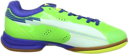 Puma evoSPEED Indoor 1 102528 Unisex-Erwachsene Handballschuhe Green