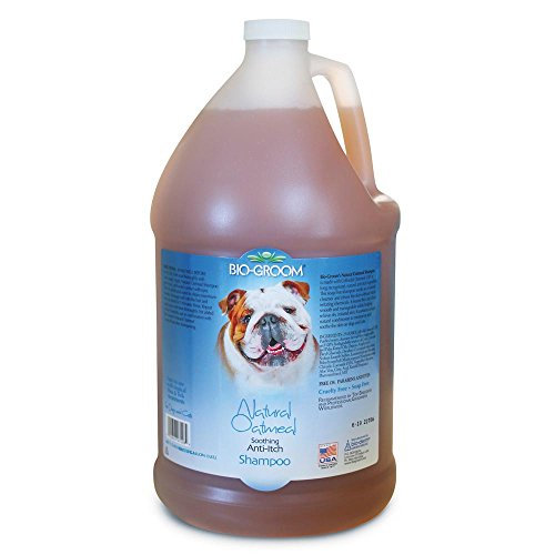Bio Groom Natural Oatmeal Shampoo, 3.8 Litre