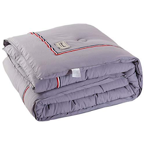 Couette d'hiver en Coton Lavé De Couleur Pure Couette Chaude Et Épaisse Quilt Velvet Feather 2000g (Color : Gray, Size : 200cm*230cm)
