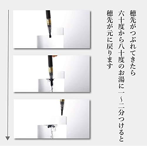 Zoom IMG-3 pentel fude pen ricaricabile inchiostro
