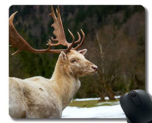 Gaming Mouse Pad Design, Fawn weiße Tier Natur - Genähte Kanten